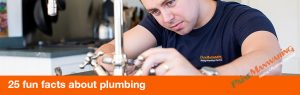 25 fun facts about plumbing